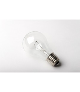 Lampe adapt. vieux fours E27 standard claire 230 V 60 W